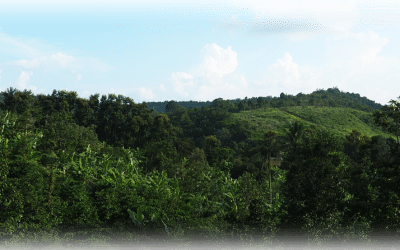 Arrivée dans la province du Mondulkiri – Sen Monorom